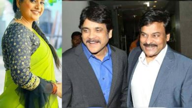 Photo of Roja condition! To do the job only with Two heroes- Nagarjuna and Chiranjeevi