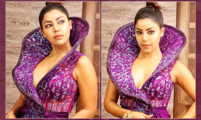 Debina Bonnerjee stuns in a purple gown as she bags the Fittest Icon Award - view pics | Bollywood Bubble